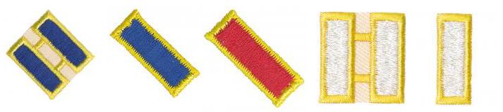 Leiterabzeichen